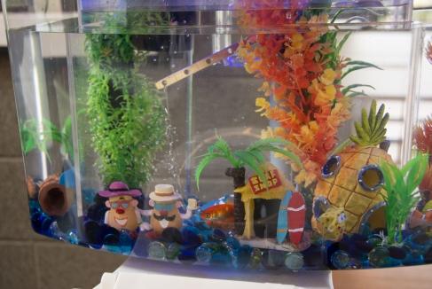 COBToiletBowlGoldfish