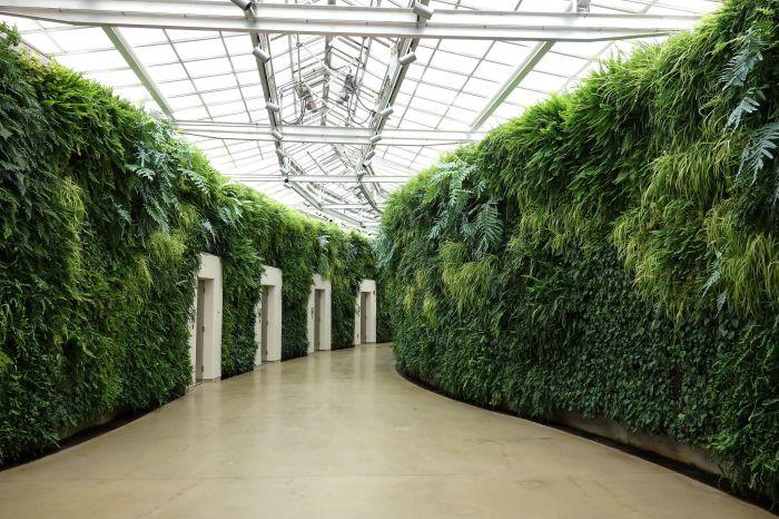 2048px-Green_wall_-_Longwood_Gardens_-_DSC01041