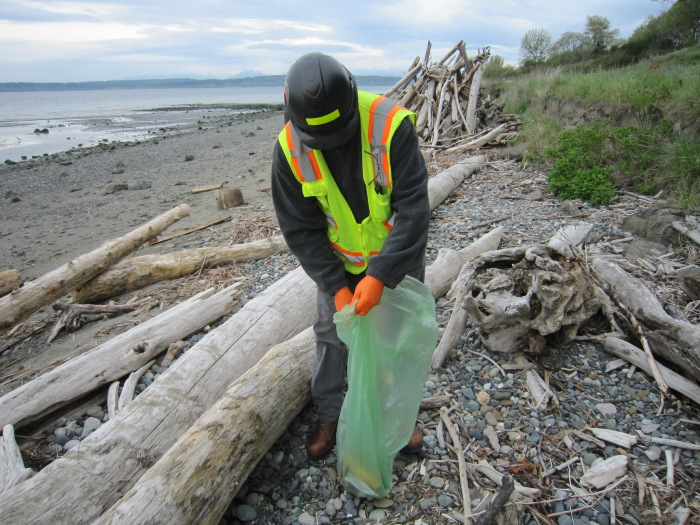 Beach clean up volunteer
