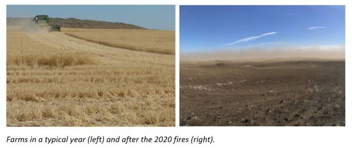 Farms in a typical year (left) and after the 2020 fires (right).