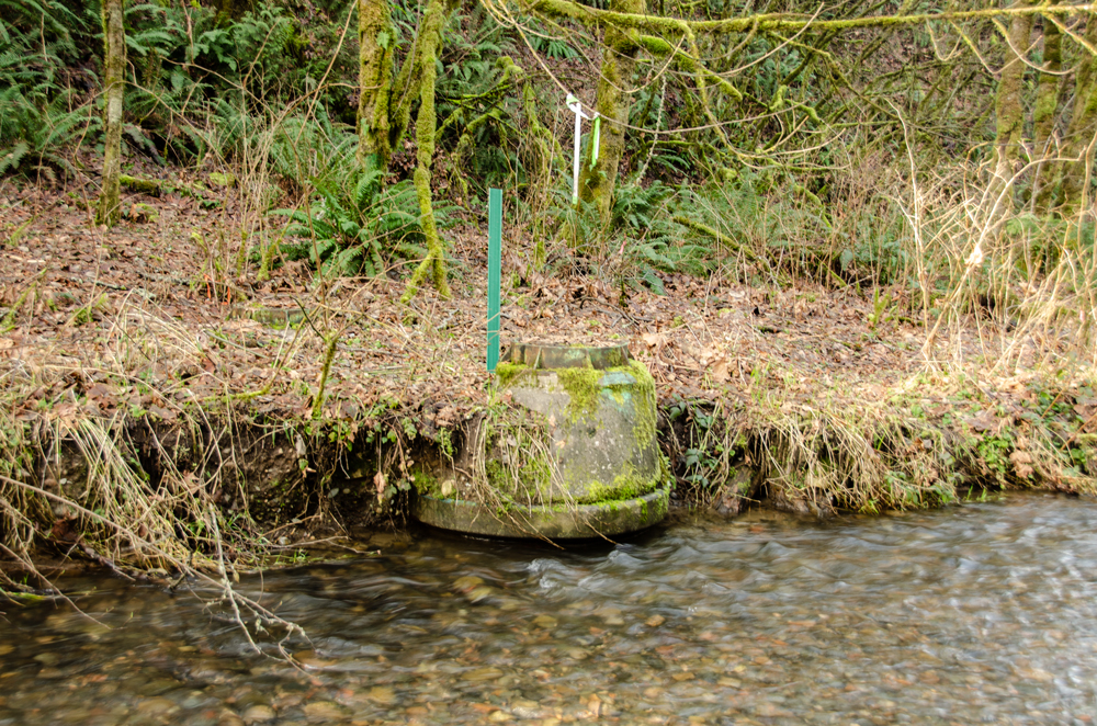 A round, concrete maintenance hole structure sits along the bank of a stream in the background. Clear water runs over rocks in the stream in front of the structure.
