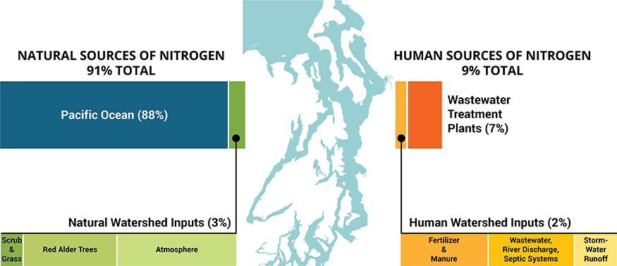 Graphic that shows that 91% of nitrogen comes from natural sources